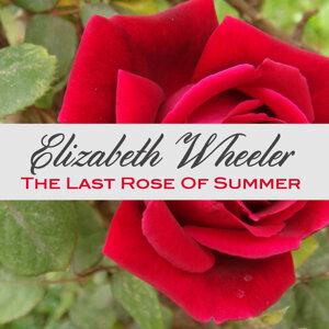 Elizabeth Wheeler 歌手頭像