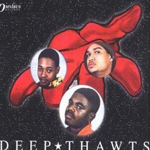 Deep Thawts 歌手頭像