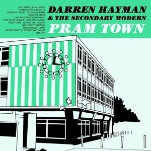 Darren Hayman & The Secondary Modern 歌手頭像