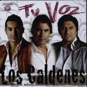 Los Caldenes 歌手頭像