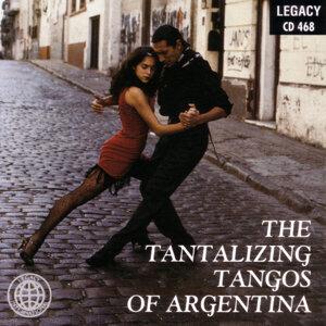 Argentina Tango Orchestra 歌手頭像