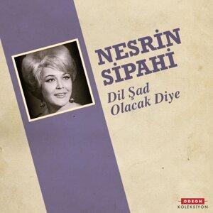 Nesrin Sipahi 歌手頭像
