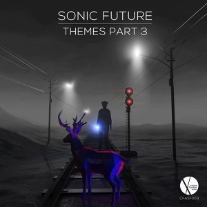 Sonic Future