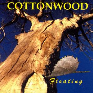 Cottonwood 歌手頭像