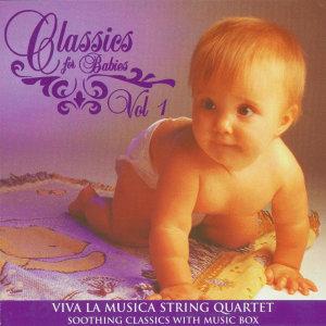 Viva La Musica String Quartet 歌手頭像