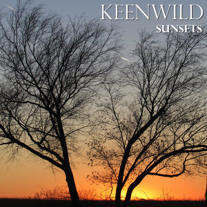Keenwild Artist photo