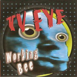 Tv Eve 歌手頭像