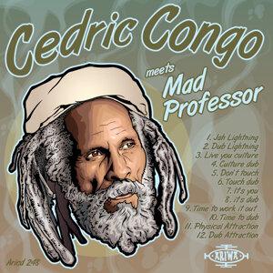 Cedric Congo & Mad Professor 歌手頭像