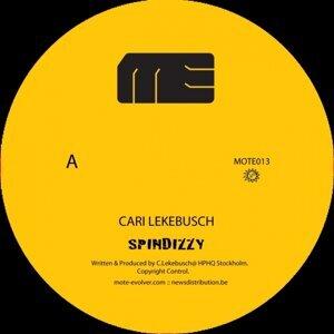 Cari Lekebusch
