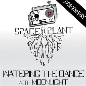 SpacePlant 歌手頭像
