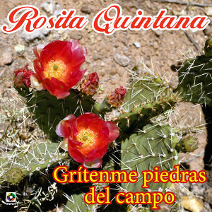 Rosita Quintana 歌手頭像
