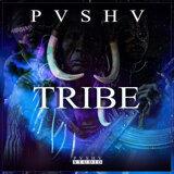 PVSHV