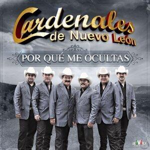 Cardenales De Nuevo León 歌手頭像