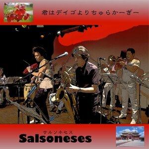 Salsoneses 歌手頭像
