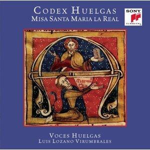 Voces Huelgas 歌手頭像