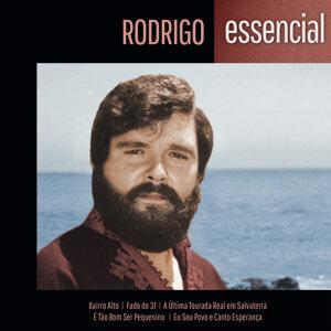 Rodrigo (羅德里哥) 歌手頭像