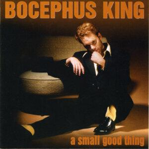 Bocephus King 歌手頭像