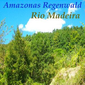 Rio Madeira 歌手頭像