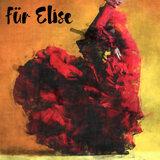 Spanish Flamenco, Flamenco World Music, flamenco