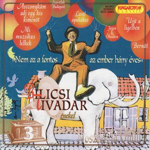Bilicsi Tivadar 歌手頭像