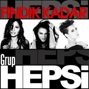 Grup Hepsi 歌手頭像