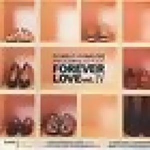 Forever Love Vol.4 アーティスト写真