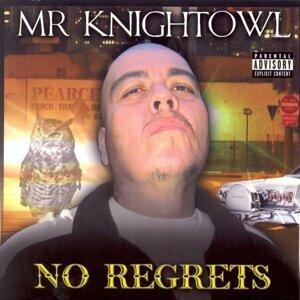 Mr. Knightowl 歌手頭像