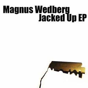 Magnus Wedberg