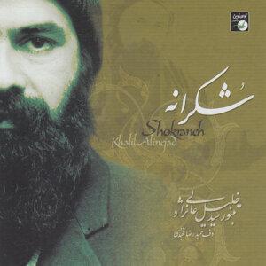 Seyed Khalil Alinejad 歌手頭像
