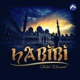 Хабиб Исламов