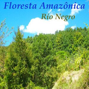Rio Negro 歌手頭像