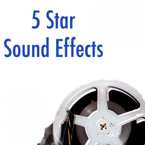 5 Star Sound Effects 歌手頭像