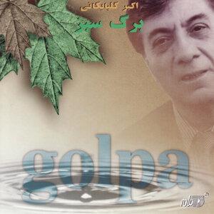 Akbar Golpaygani 歌手頭像