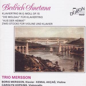 Trio Mersson 歌手頭像