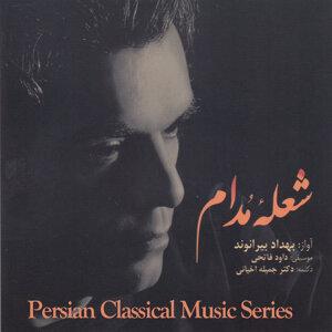 Behdad Beyranvand 歌手頭像