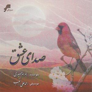 Bahram Hasiri 歌手頭像