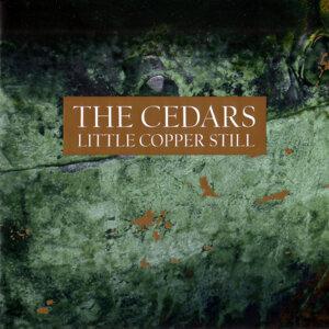 The Cedars 歌手頭像