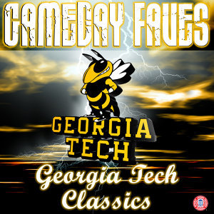The Georgia Tech Yellow Jacket Marching Band