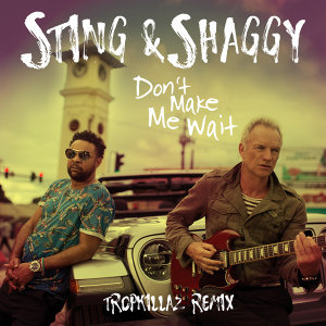 Sting, Shaggy