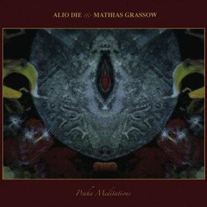 Alio Die, Mathias Grassow 歌手頭像