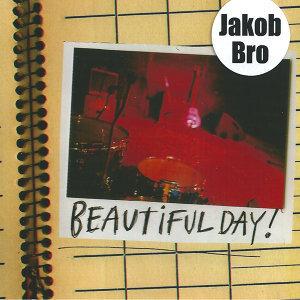 Jakob Bro 歌手頭像