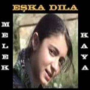 Melek kaya /Faysal kaya 歌手頭像