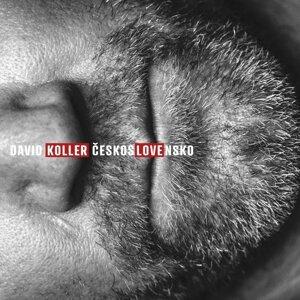 David Koller 歌手頭像