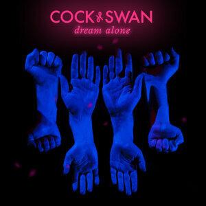 Cock & Swan 歌手頭像