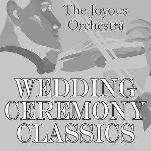 The Joyous Orchestra 歌手頭像