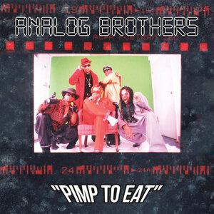 Analog Brothers 歌手頭像