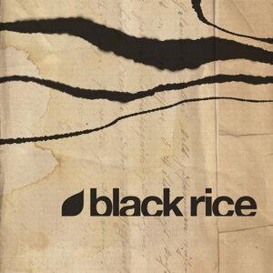 Black Rice 歌手頭像