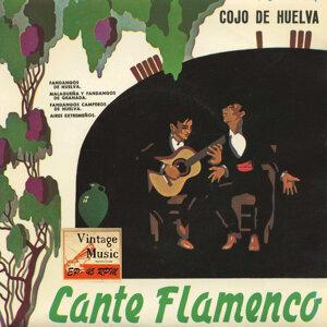 Cojo De Huelva 歌手頭像