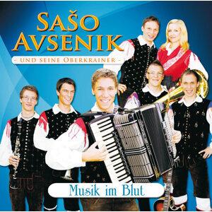 Saso Avsenik 歌手頭像