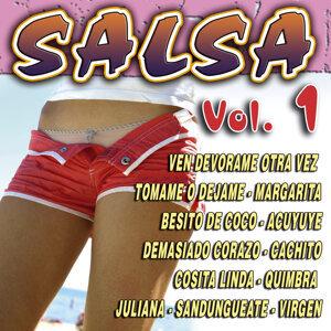 La Salsa del Caribe 歌手頭像